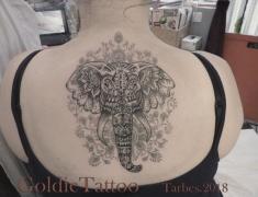 GOLDIE-TATTOO-Tarbes.oct.2017.WEB..ELEPHANT-SUR-DENTELLE-HENNE-GRISE-DOS.jpg